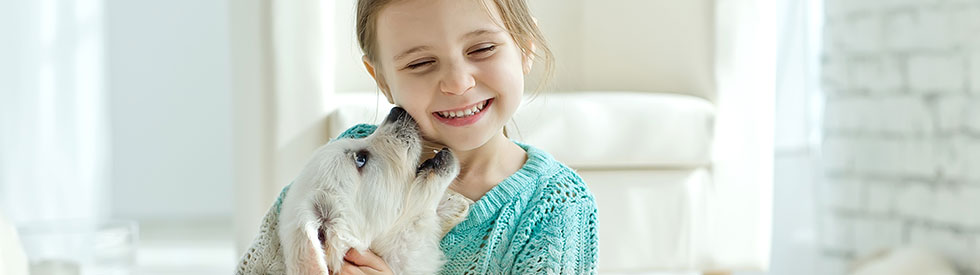 Young girl smiling while playing with a dog.
