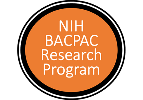 NIH back pain consortium research program