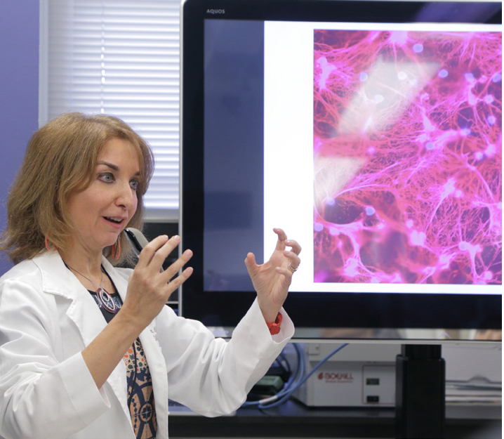 Dr. Mariana Kaplan (l) displays immunofluorescence images depicting neutrophil extracellular traps (NETs), critical mediators of vascular damage in lupus patients.