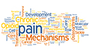 Infographic: Pain Registries and Other NIH Pain Resources