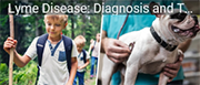 Lyme Disease diagnosis - A boy and a dog