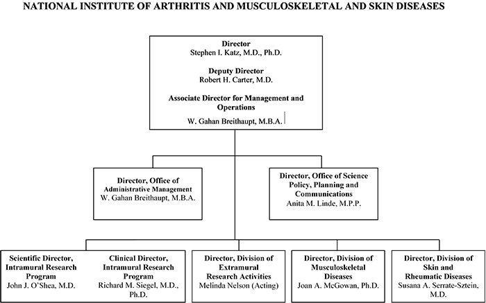 Organization chart for the National Institute of Arthritis and Musculoskeletal and Skin Diseases (NIAMS). The chart shows 7 boxes. The overarching box contains the names of the Director, Deputy Director and the Associate Director for Management and Operations. The Director of NIAMS is Stephen I. Katz, M.D., Ph.D., the Deputy Director is Robert H. Carter, M.D.. The Associate Director for Management and Operations is W. Gahan Breithaupt, M.B.A. The top box subsumes 6 boxes beneath. The director's 6 direct reports are: Office of Administrative Management Director, W. Gahan Breithaupt, M.B.A.; Office of Science Policy and Planning and Communications Director, Anita M. Linde, M.P.P.; Intramural Research Program Scientific Director, John J. O'Shea, M.D.; Division of Extramural Research Activities Director, Melinda Nelson (Acting); Division of Musculoskeletal Diseases Director, Joan A. McGowan, Ph.D.; Division of Skin and Rheumatic Diseases Director, Susana Serrate-Sztein, M.D.