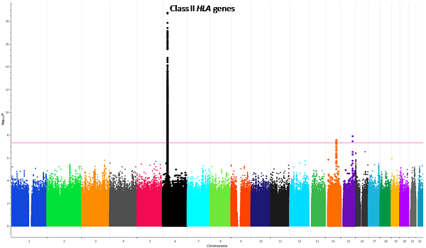 African American Scleroderma GWAS of MEGA array graphic