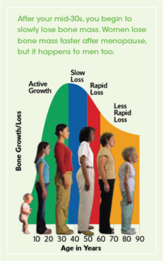 image from The Surgeon General's Report on Bone Health and Osteoporosis: What It Means to You, 2004.