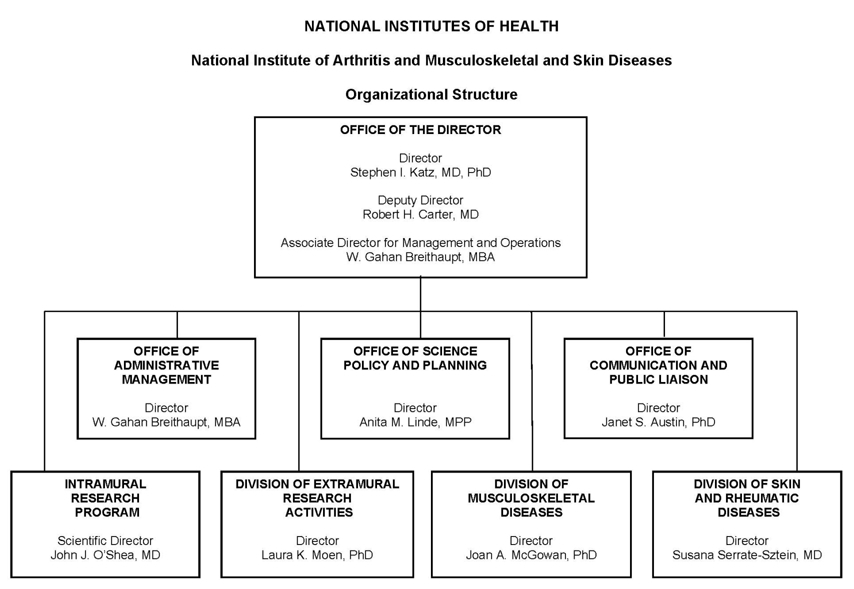 Organization chart for the National Institute of Arthritis and Musculoskeletal and Skin Diseases (NIAMS). Organization chart for the National Institute of Arthritis and Musculoskeletal and Skin Diseases (NIAMS). The chart shows 8 boxes, the overarching box contains the names of the Director, Deputy Director and the Associate Director for Management and Operations. The Director of NIAMS is Stephen I. Katz, M.D., Ph.D., the Deputy Director is Robert H. Carter, M.D., the Associate Director for Management and Operations is W. Gahan Breithaupt, M.B.A. The top box subsumes 7 boxes beneath. The director's 7 direct reports are: Office of Administrative Management Director, W. Gahan Breithaupt, M.B.A., Office of Science Policy and Planning Director, Anita M. Linde, M.P.P., Office of Communication and Public Liaison Director, Janet S. Austin, Ph.D., Intramural Research Program Scientific Director, John J. O'Shea, M.D., Division of Extramural Research Activities Acting Director, Laura K. Moen, Ph.D., Division of Musculoskeletal Diseases Director, Joan A. McGowan, Ph.D., Division of Skin and Rheumatic Diseases Director, Susana Serrate-Sztein, M.D.