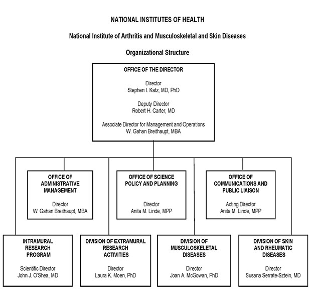 Organization chart for the National Institute of Arthritis and Musculoskeletal and Skin Diseases (NIAMS). The chart shows 8 boxes, the overarching box contains the names of the Director, Deputy Director and the Associate Director for Management and Operations. The Director of NIAMS is Stephen I. Katz, M.D., Ph.D., the Deputy Director is Robert H. Carter, M.D., the Associate Director for Management and Operations is W. Gahan Breithaupt, M.B.A. The top box subsumes 7 boxes beneath. The director's 7 direct reports are: Office of Administrative Management Director, W. Gahan Breithaupt, M.B.A., Office of Science Policy and Planning Director, Anita M. Linde, M.P.P., Office of Communications and Public Liaison Acting Director, Anita M. Linde, M.P.P., Intramural Research Program Scientific Director, John J. O'Shea, M.D., Division of Extramural Research Activities Director, Laura K. Moen, Ph.D., Division of Musculoskeletal Diseases Director, Joan A. McGowan, Ph.D., Division of Skin and Rheumatic Diseases Director, Susana Serrate-Sztein, M.D.
