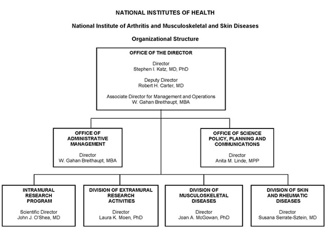 Organization chart for the National Institute of Arthritis and Musculoskeletal and Skin Diseases (NIAMS). The chart shows 7 boxes, the overarching box contains the names of the Director, Deputy Director and the Associate Director for Management and Operations. The Director of NIAMS is Stephen I. Katz, M.D., Ph.D., the Deputy Director is Robert H. Carter, M.D., the Associate Director for Management and Operations is W. Gahan Breithaupt, M.B.A. The top box subsumes 6 boxes beneath. The director's 6 direct reports are: Office of Administrative Management Director, W. Gahan Breithaupt, M.B.A., Office of Science Policy and Planning and Communications Director, Anita M. Linde, M.P.P., Intramural Research Program Scientific Director, John J. O'Shea, M.D., Division of Extramural Research Activities Director, Laura K. Moen, Ph.D., Division of Musculoskeletal Diseases Director, Joan A. McGowan, Ph.D., Division of Skin and Rheumatic Diseases Director, Susana Serrate-Sztein, M.D.
