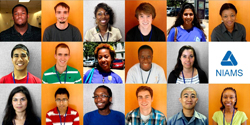Photo Collage of 2011 NIAMS Interns