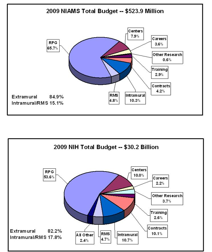 Top pie chart shows NIAMS' budget and bottom pie chart shows N.I.H's 2009 budget. NIAMS total budget is $523.9 million. Extramural spending is 84.9%. Intramural and Research management and support spending is 15.1%. Research management and support, 4.8%. Intramural research, 10.3%. Contracts, 4.2%. Training, 2.9%. Other research, 0.6%. Careers, 3.6%. Centers, 7.9%. Research project grants (RPGs), 65.7%. N.I.H's total budget is $30.2 billion. Extramural spending is 82.2%. Intramural and Research management and support spending is 17.8%. All Other, 2.4%. Research management and support, 4.7%. Intramural research, 10.7%. Contracts, 10.1%. Training, 2.6%. Other research, 3.7%. Careers, 2.2%. Centers, 10.0%. Research project grants (R.P.Gs, 53.6%.