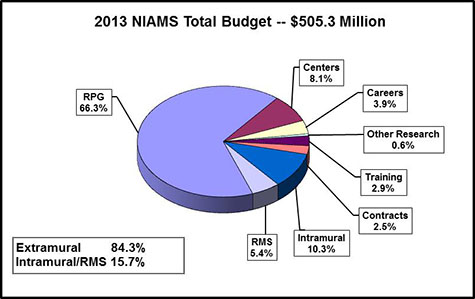 Pie chart shows the N.I.A.M.S.' budget. The N.I.A.M.S. total budget is $505.3 Million. Extramural spending is 84.3%. Intramural/ Research Management and Support spending is 15.7%. Research Management and Support, 5.4%. Intramural research, 10.3%. Contracts, 2.5%. Training, 2.9%. Other research, 0.6%. Careers, 3.9%. Centers, 8.1%. Research Project Grants (RPGs), 66.3%.