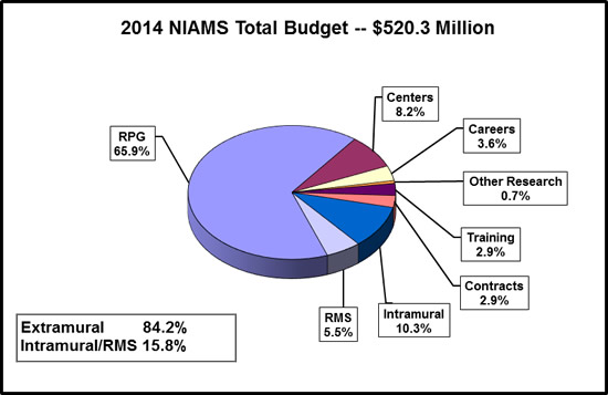 Pie chart shows the N.I.A.M.S.' budget. The N.I.A.M.S. total budget is $520.3 Million. Extramural spending is 84.2%. Intramural/ Research Management and Support spending is 15.8%. Research Management and Support, 5.5%. Intramural research, 10.3%. Contracts, 2.9%. Training, 2.9%. Other research, 0.7%. Careers, 3.6%. Centers, 8.2%. Research Project Grants (RPGs), 65.9%.