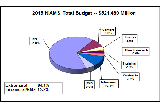Pie chart shows the N.I.A.M.S.' budget. The N.I.A.M.S. total budget is $521.480 Million. Extramural spending is 84.1%. Intramural/ Research Management and Support spending is 15.9%. Research Management and Support, 5.5%. Intramural research, 10.4%. Contracts, 3.1%. Training, 2.8%. Other research, 0.6%. Careers, 3.5%. Centers, 8.3%. Research Project Grants (RPGs), 65.8%.