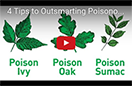 Image of a youtube video about outsmarting poison ivy.