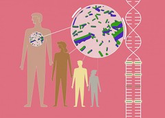 Illustration showing genome variants